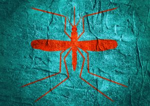 mosquito silhouette on concrete textured surface